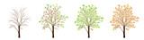 Four seasons of tree vector - 195150974