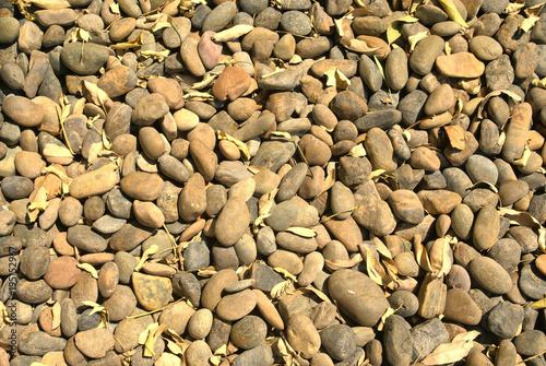 Foto op Canvas Stenen stone, texture, pebbles, stones, beach, pebble, rock, nature, pattern, abstract, gravel, gray, smooth, rocks, natural, wallpaper, round, surface, small, garden, wet, grey, closeup, sea