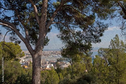 Foto op Canvas Natuur City of Plama de Mallorca Spain