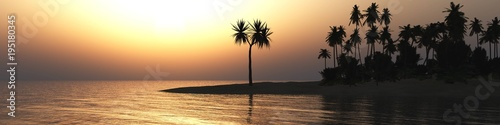 sunset on a tropical island with palm trees 3D rendering  - 195180345