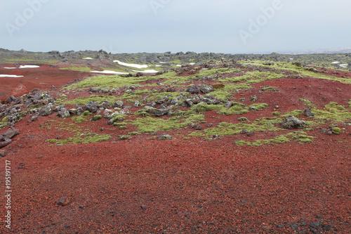 Foto op Canvas Diepbruine Snæfells Iceland