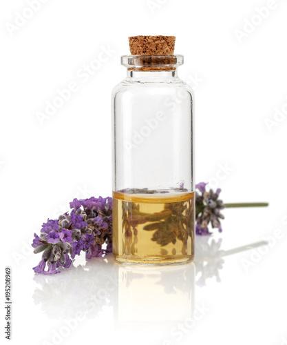 Lavender - 195208969
