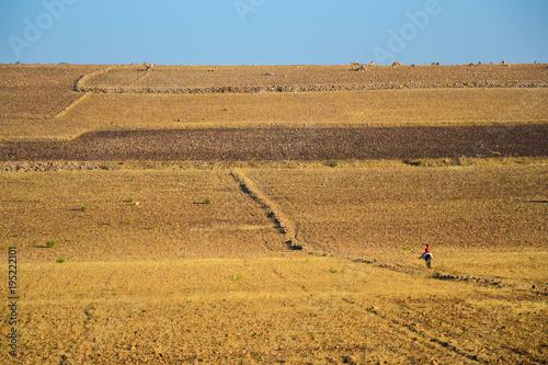 Fotobehang Honing Morocco