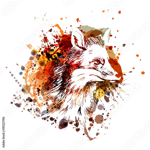 Fototapeta Vector color illustration fox head