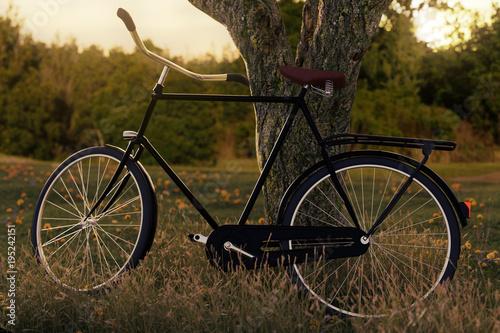 Oparty rower w wieczornym świetle. Renderowania 3D