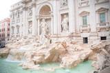 beautiful trevi fountain - 195257909
