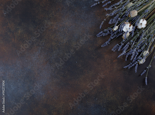 Aluminium Lavendel Lavender flowers on grunge background