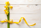 Spring, Easter Background with Daffodil Flowers