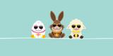 Banner Easter Egg, Bunny & Sheep Sunglasses Retro - 195296364