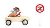 Umweltverschmutzung - Diesel Fahrverbot - 195311996