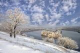 Frozen tree on winter landscape - 195325785