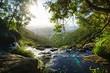 Moron Wasserfall im Lamington Nationalpark, Queensland, Australien