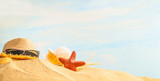 Summer Season, seashell, starfish, sunglasses and straw hat on sandy beach with sunny colorful blue sky background and copy space. Traveling and feeling lonely, cheering up, rest, refresh and relax - 195346943