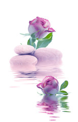 spa de piedras y flores con agua