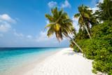 Plage des Maldives - île de Filitheyo - 195371356