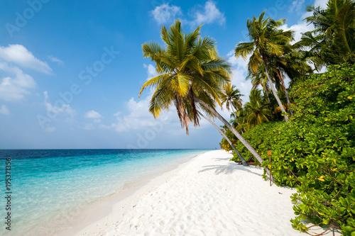 Plage des Maldives - île de Filitheyo