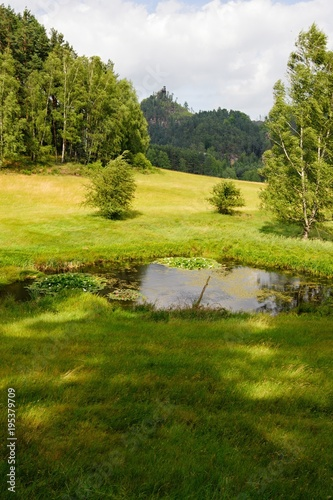Aluminium Zomer Summer landscape with forests, meadows, pond, rocks and sky