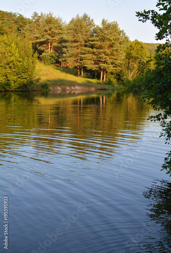 Aluminium Zomer beautiful lake near the forest