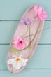 Crepe paper cosmos flowers on turquoise wooden background - 195399995