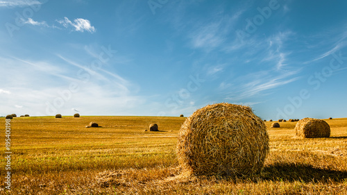 Aluminium Blauw summer agricultural landscape. A bale of golden straw on the field after harvesting under a beautiful blue sky