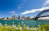 Stunning wide angle city skyline view of the Sydney CBD harbour area at Circular Quay with the opera and the harbour bridge. Seen from Dr Mary Booth Lookout in Kirribilli, Sydney, Australia. - 195412349