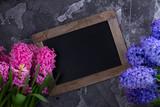 Hyacinth fresh flowers - 195469714