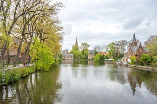 Deurstickers Brugge Beatitiful tree with green leaves overlooking the lake of love, Minnewater lake at Brugge, Belgium, Europe