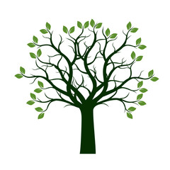 Green Spring Tree with Leaves. Vector Illustration. © topor