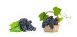 bunch of ripe grapes with leaves in a wicker basket on white background