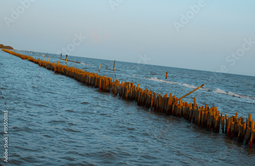 bamboo dam defend waves and  slow down waves coast . © n_u_t
