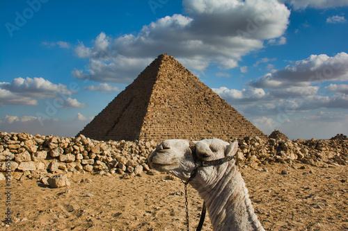 Aluminium Kameel Camel Holding Up Pyramid