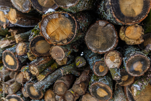 Keuken foto achterwand Brandhout textuur stack, pile, raw, dry, brown, white, closeup, natural, background, nature