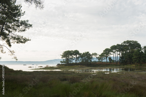 Deurstickers Wit Carreiron natural park in Arousa Island