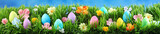 Bright colorful Easter eggs on green grass with flowers against blue sky - 195552124