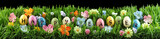 Bright colorful Easter eggs on green grass with flowers - 195552138