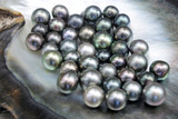Excellent Round Tahitian Black Pearls - 195553761