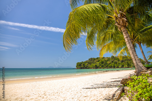 View of nice tropical beach with palms around. Holiday and vacation concept. Tropical beach.