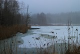 Winter - Wald - See - 195592704