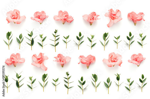 Fotobehang Azalea Spring Pattern With Pink Flowers And Green Leaves On White Background