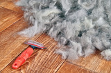 Concept Dogs Shed spring shedding grooming season. De shedding tool - rakers brush for Dog. Slicker brushes on floor next to a pile of wool. - 195609323