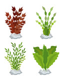 seaweed aquarium decoration set
