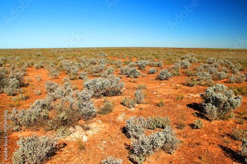 In de dag Oranje eclat Nullarbor Plain, Australia