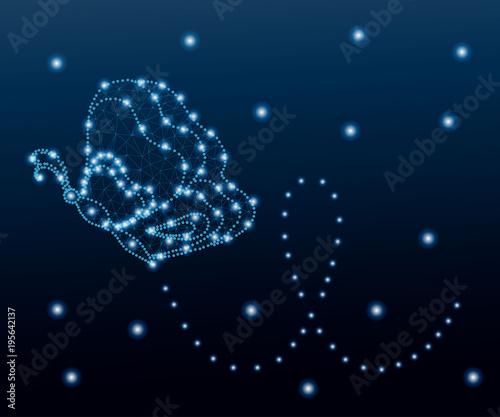 Fotobehang Vlinders in Grunge Butterfly, polygon, blue stars 1