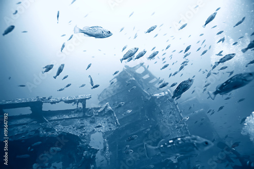 Foto op Aluminium Schipbreuk shipwreck, diving on a sunken ship, underwater landscape
