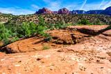 Cathedral Rock in Sedona, Arizona - 195655128