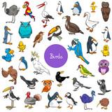 Cartoon Birds Animal Characters Big Set Wall Sticker