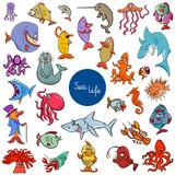 cartoon sea life animal characters collection