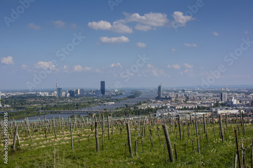 Foto op Canvas Wenen view over Vienna from nearby vineyards
