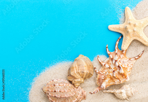 Fototapeta Sand with seashells on blue background. Top view. Copy space.