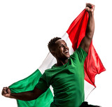 Fan / Sport Player holding the flag of Mexico - 195665164